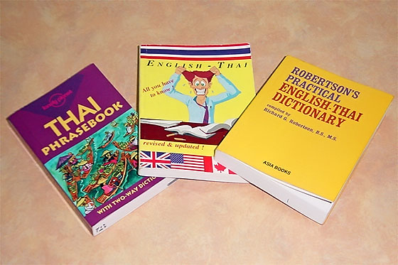 Some of the books I used in my attempt to learn the language