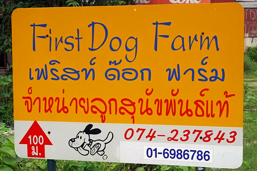 I believe this dog farm provides pets, rather than food