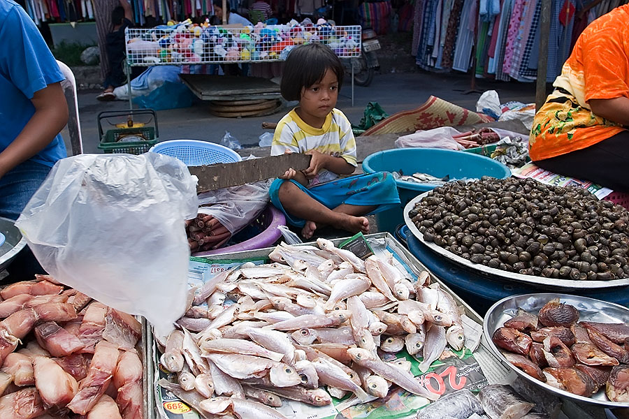 Trying to keep flies off fish at a Thai fresh market
