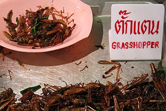 One of the more exotic dishes available in Thailand - how would you like your grasshoppers cooked, sir?