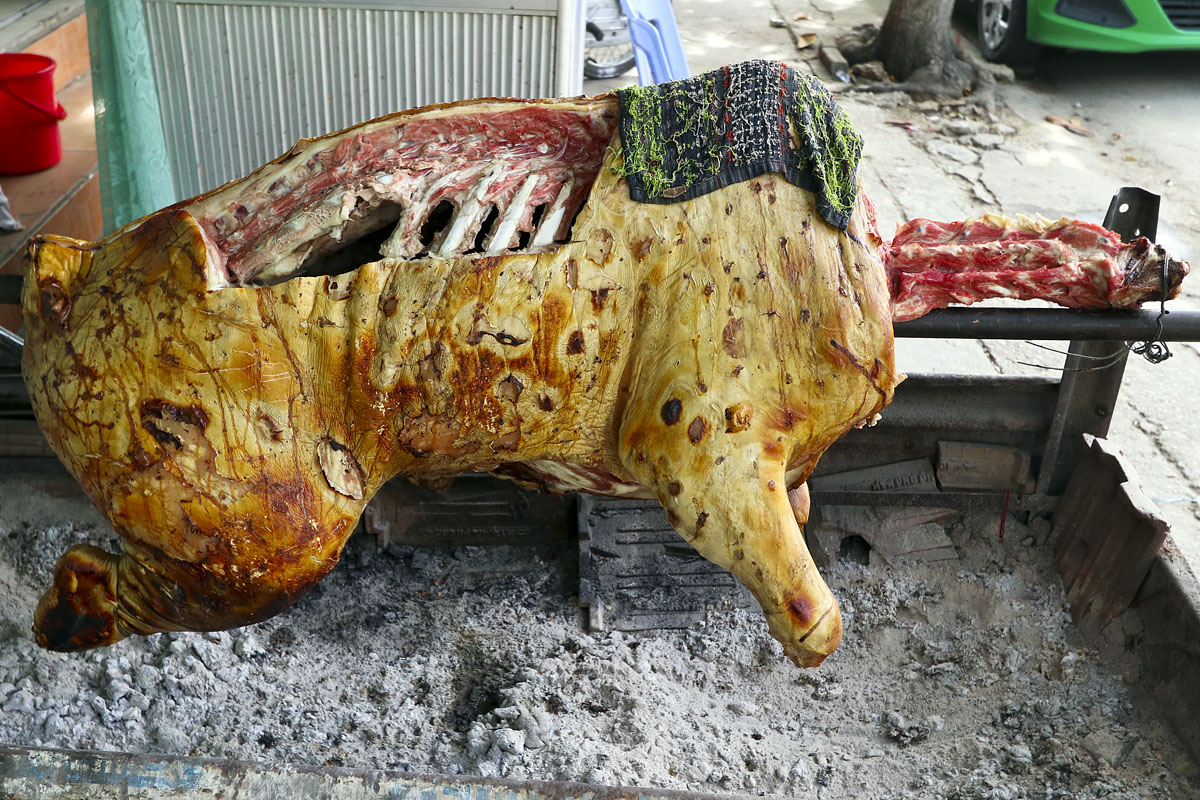 A pig being spit-roasted in Hoi An, Vietnam