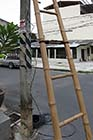 Bamboo ladders - Click for larger image