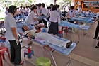 Thai blood donors - Click for larger image