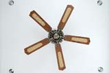 Ceiling fan - Click for larger image
