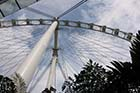 Singapore Flyer - Click for larger image