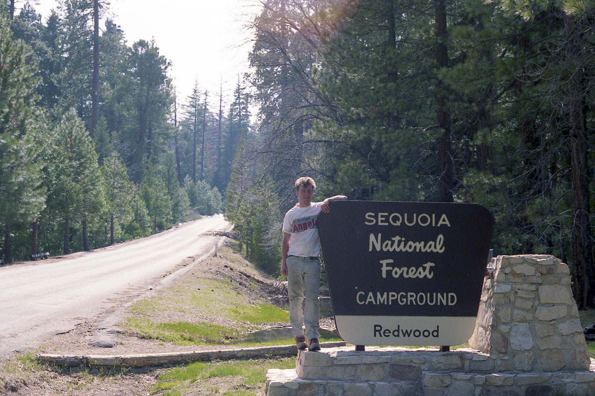 Tree planting expedition in Sequoia National Park